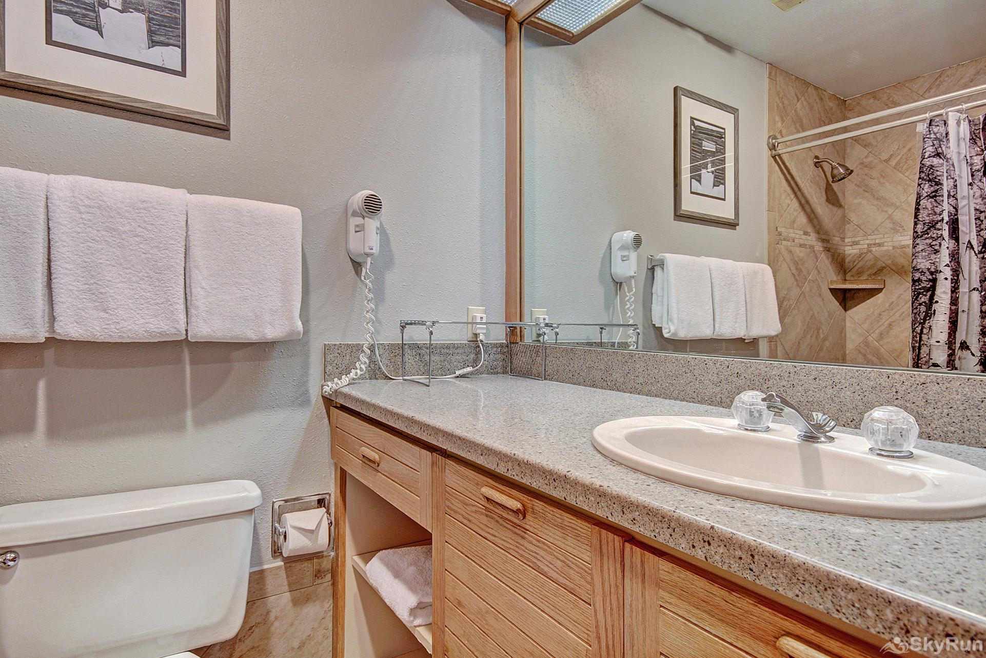 2752 Slopeside Bathroom