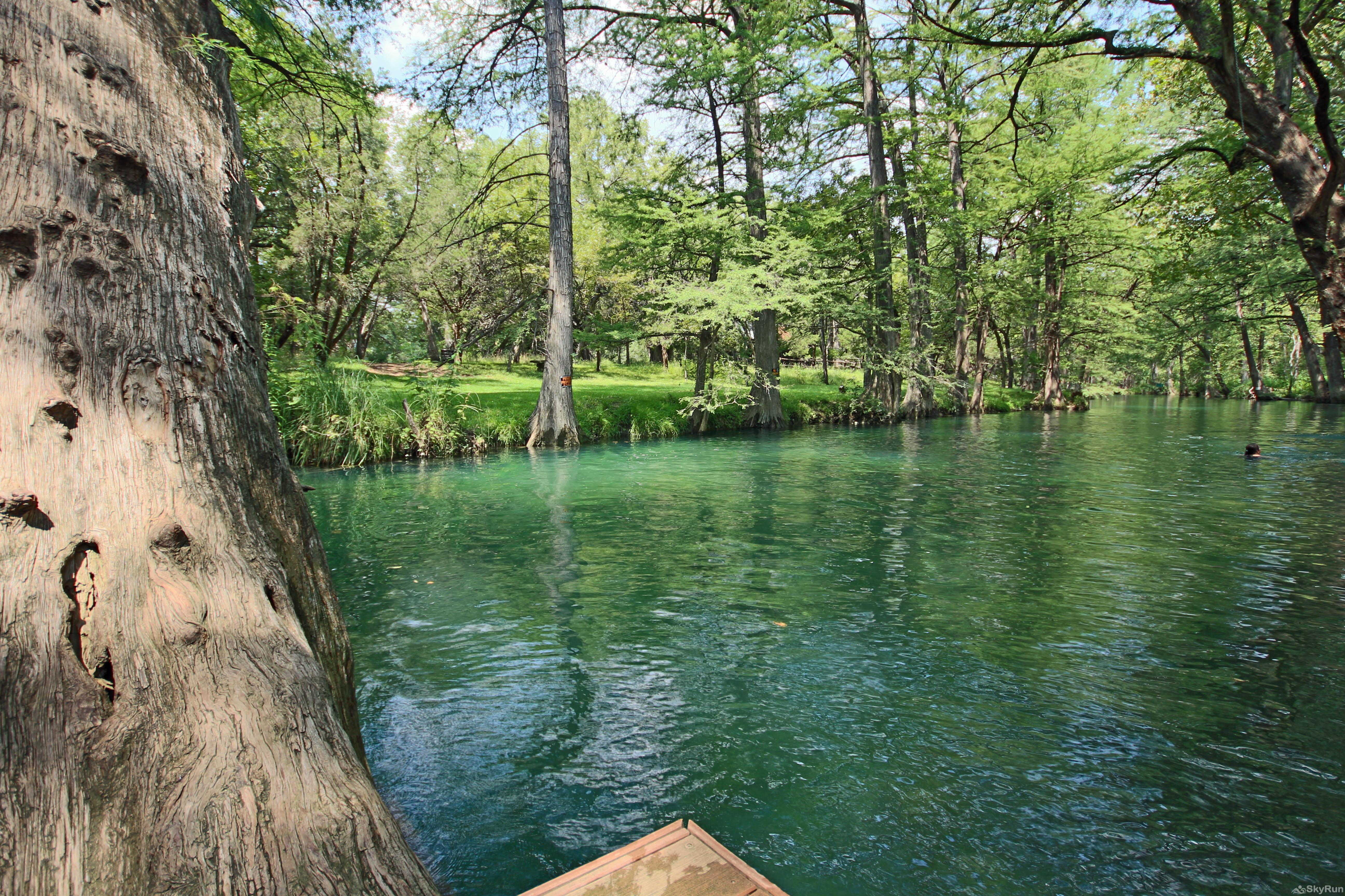 STAR OF TEXAS AND COTTAGE COMBO Blue Hole Regional Park in nearby Wimberley