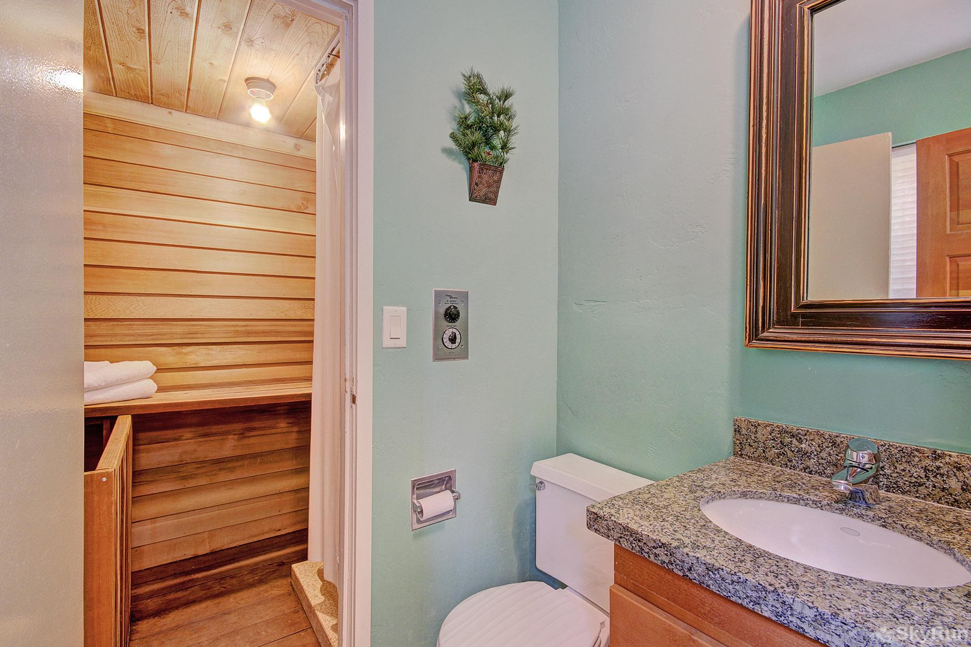 Peace In The Pines Main level hall bathroom with walk-in shower and dry sauna