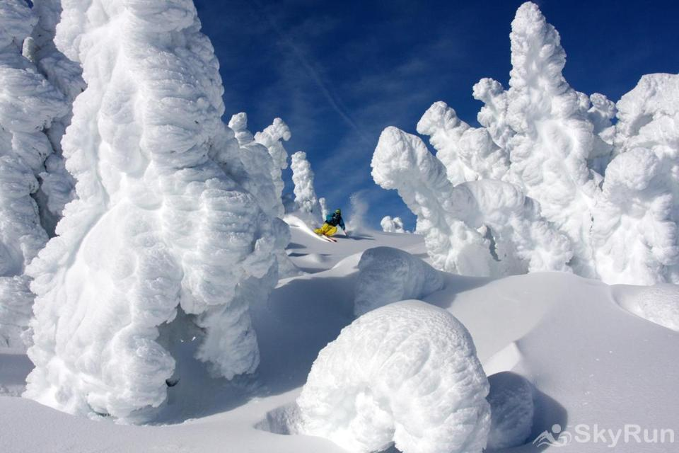 Silver Wolf Penthouse Ski awesome powder and see the legendary snow ghosts