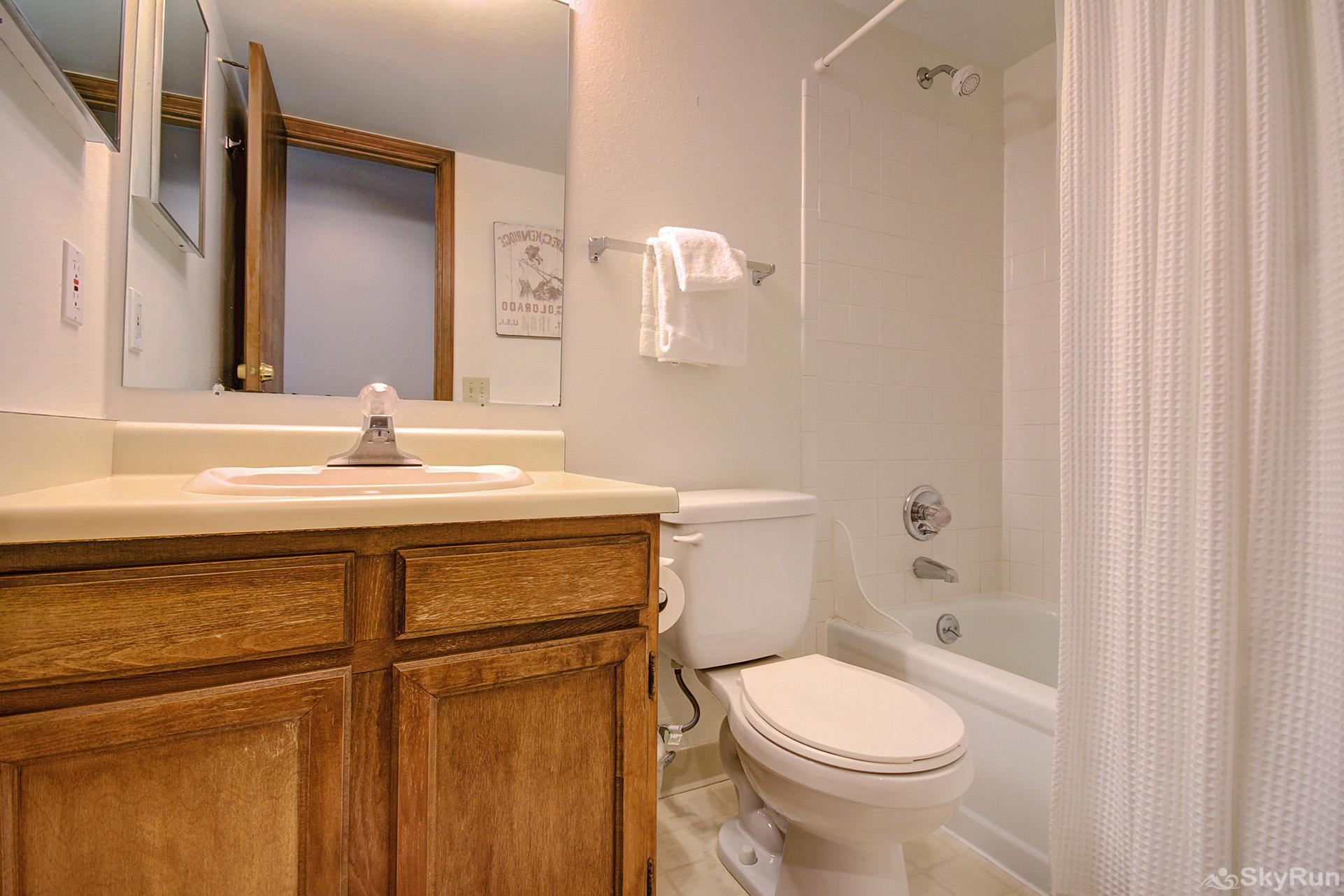 Tyra Summit A2E/F Second queen master ensuite bath