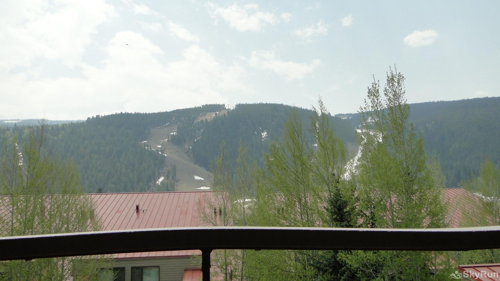 204 Ski Run Balcony View