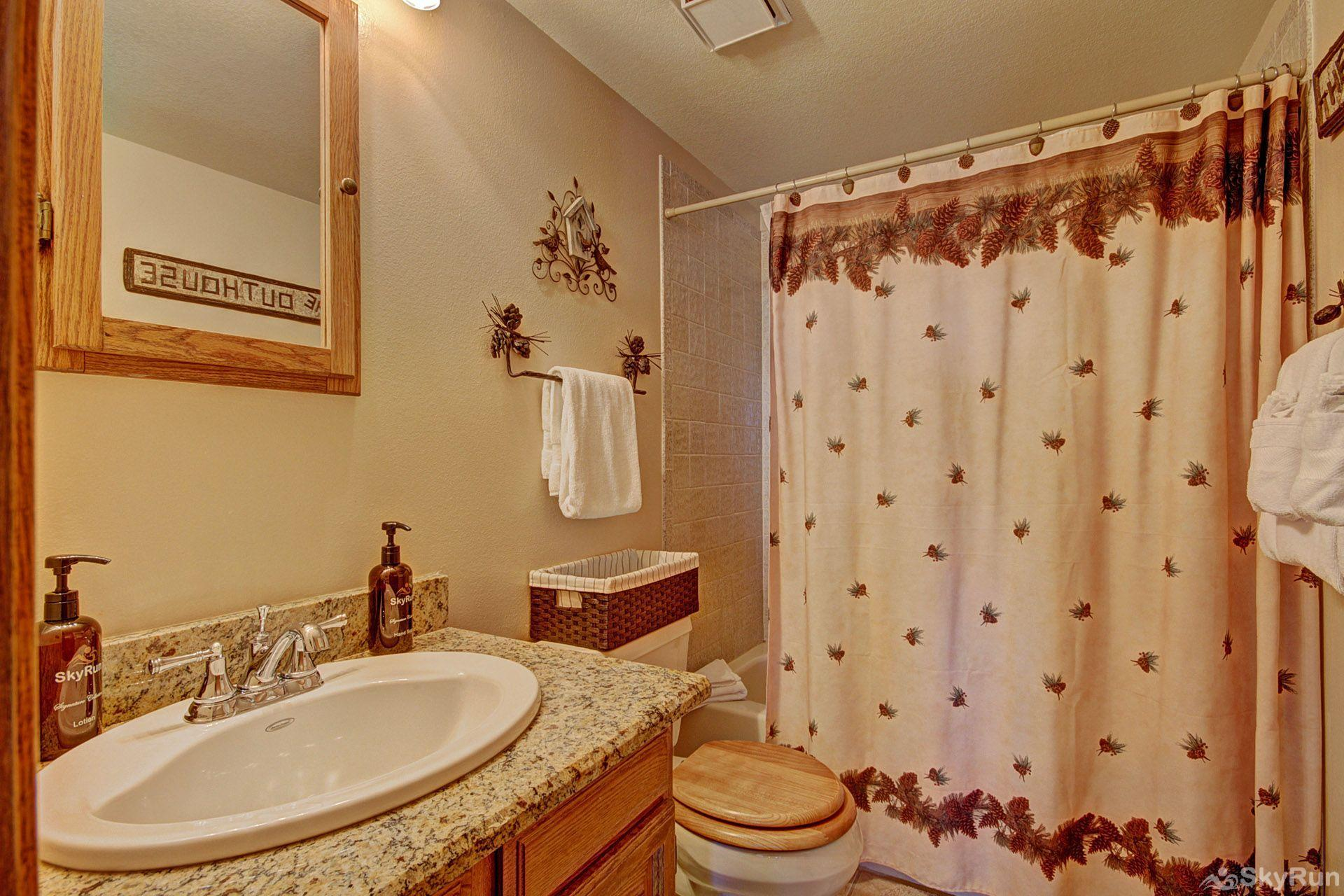 BB204 Buffalo Village 2BR 2BA Master bathroom
