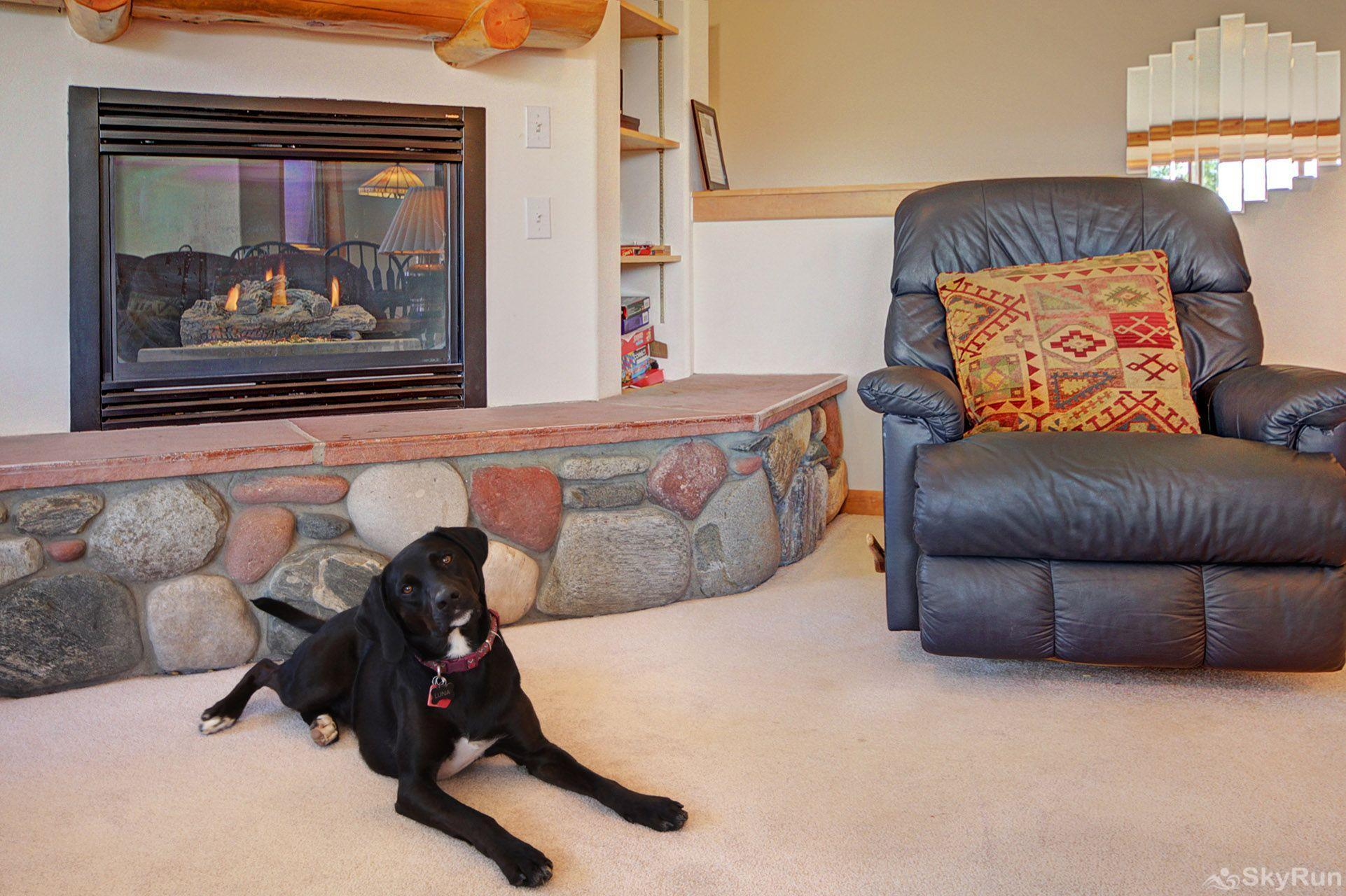 Sauterne Sanctuary 3BR 3BA Bring your best friend!
