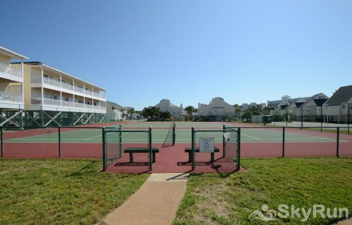 Paradise Found 9110 Tennis Courts