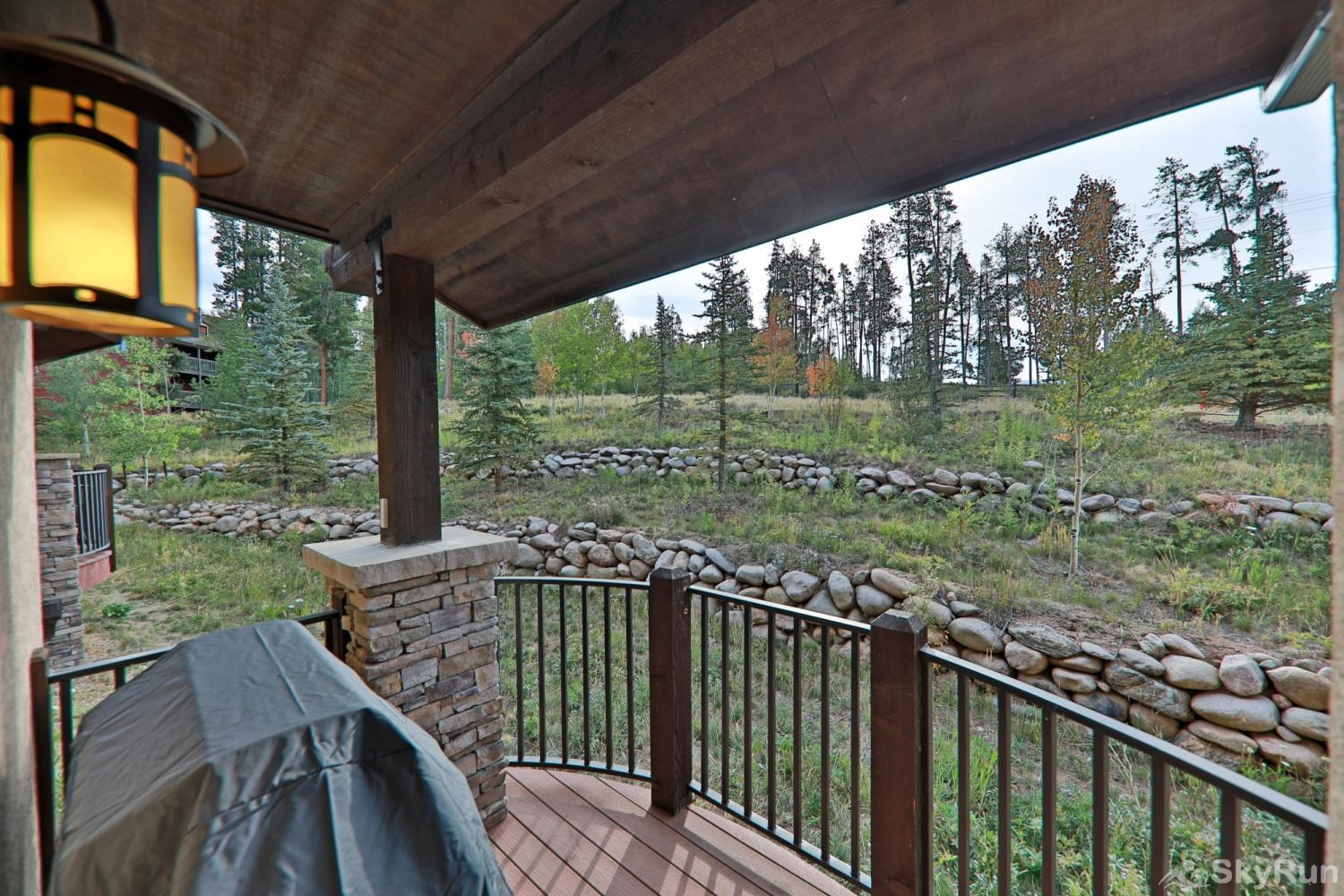 Mountain Terrace Private back deck with Grill