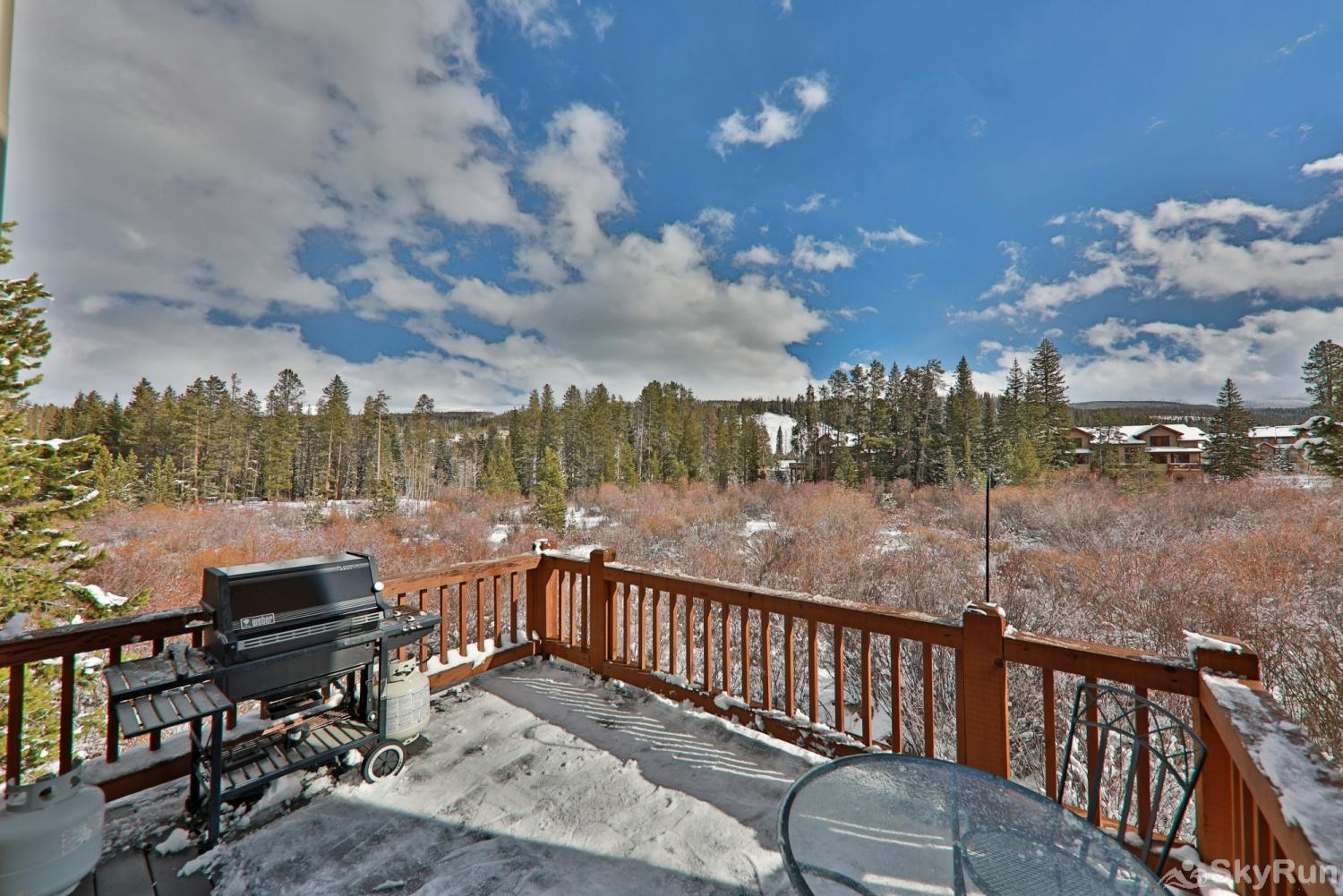 102 Willows Way Private Deck with Views and Grill