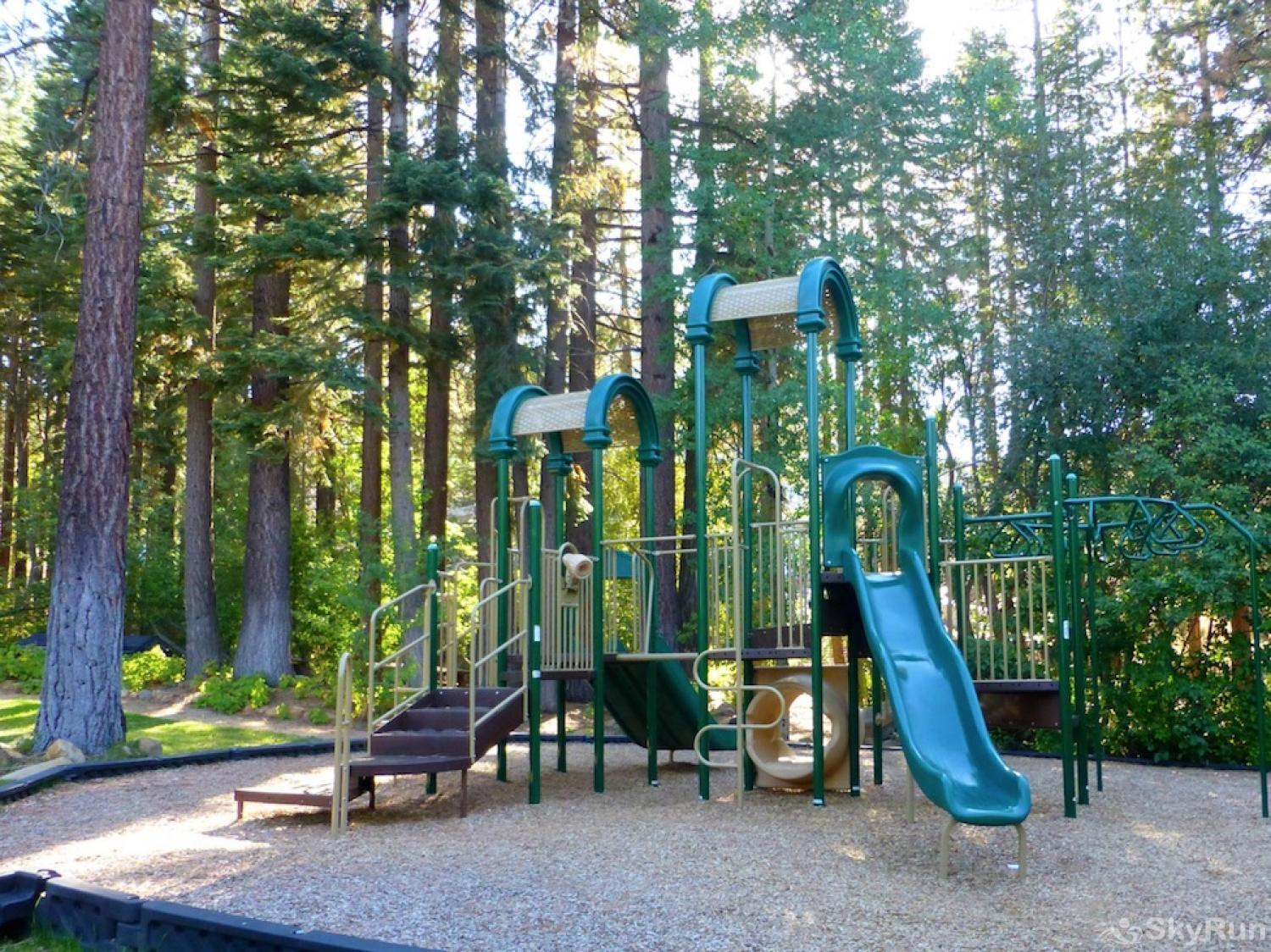 Bear Lodge at Northstar NPOA Recreation Center - Play Area