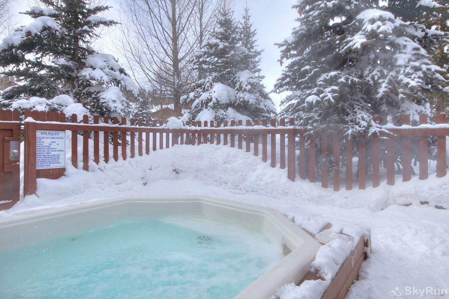 Swans Nest Villa 1601 Enjoy access to outdoor hot tubs