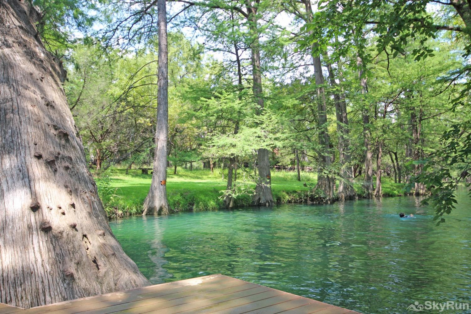 BELLA'S COVE Blue Hole Regional Park in Wimberley