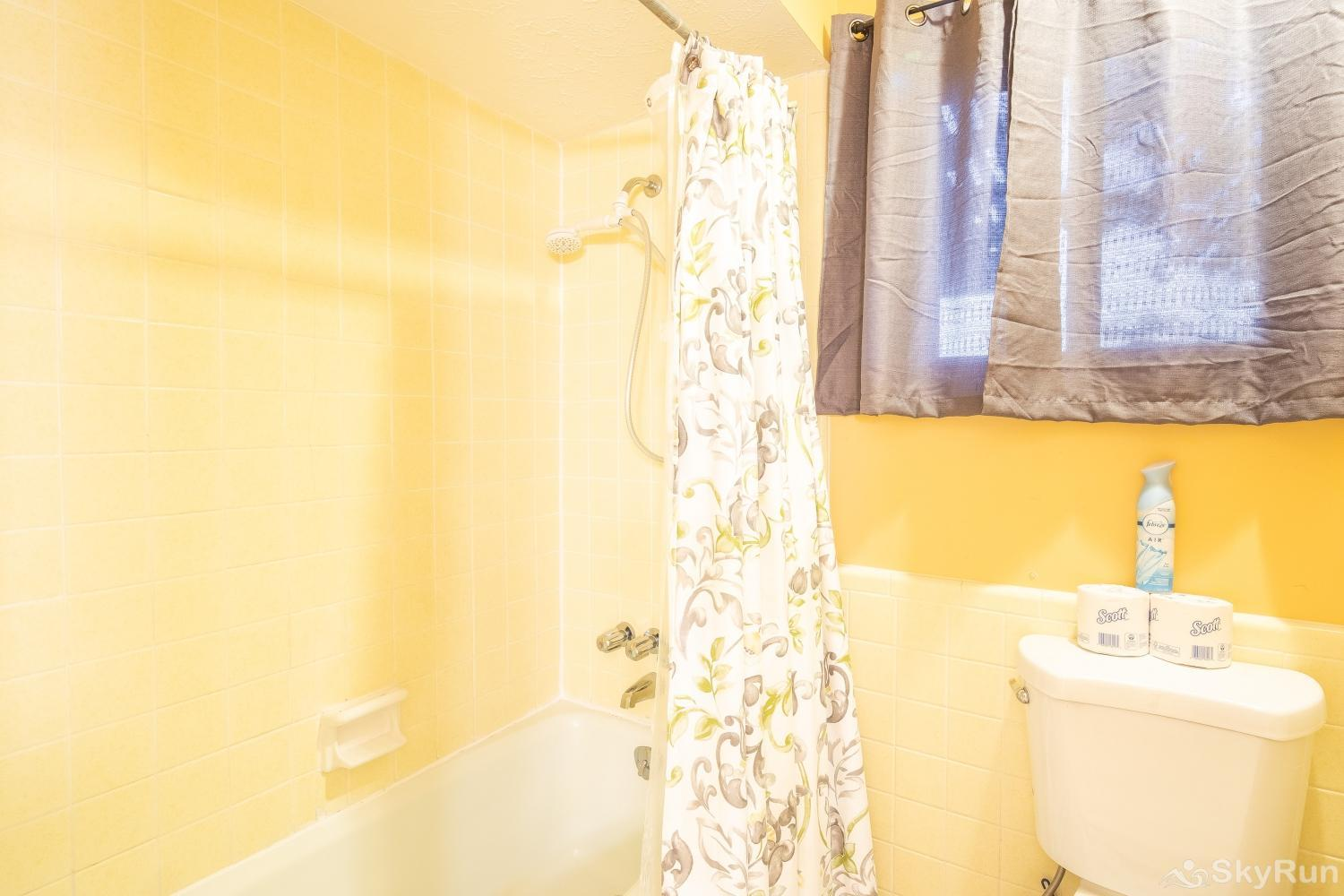 VALLEY VIEW Shower/ tub combo in second bathroom