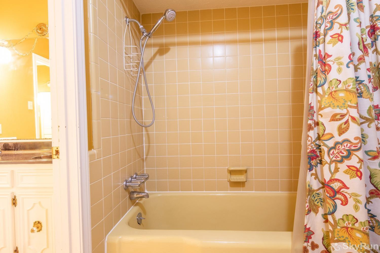 VALLEY VIEW Shower/tub combo in master bathroom
