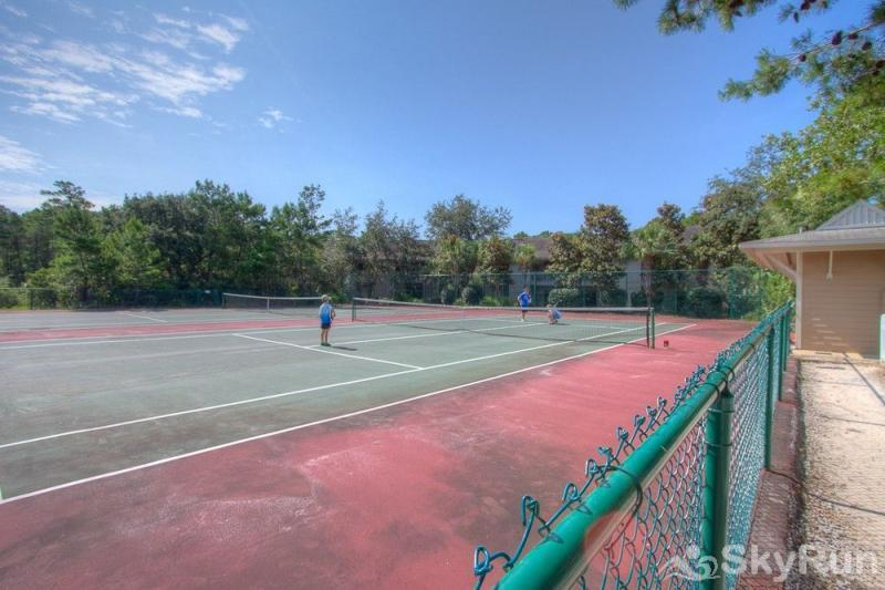Teddy Bear Tennis Courts