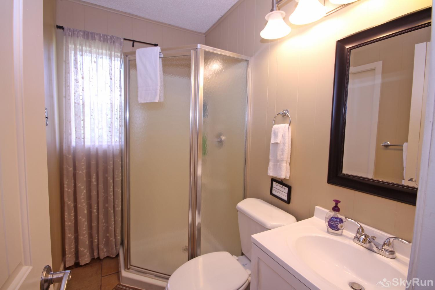LAKEPOINT LOOKOUT Bathroom with Walk- in Shower