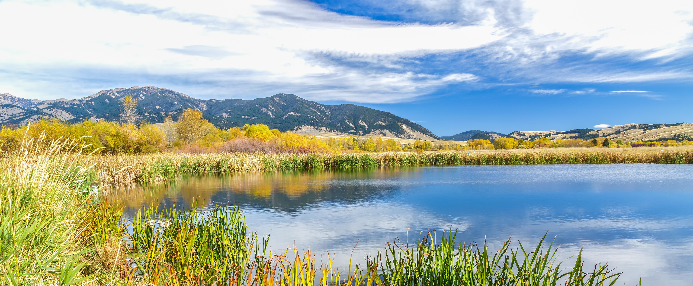 Fall Montana